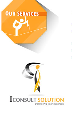 Brand Identity Consult Solutions
