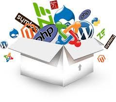 web portal development solution