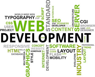 Website Development India